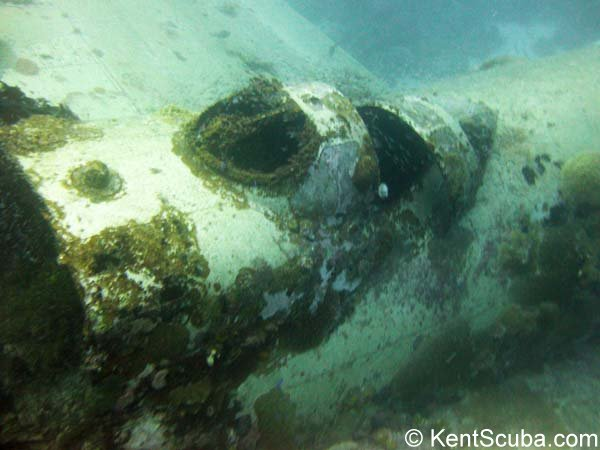 Betty Bomber wreck dive with Kent Scuba