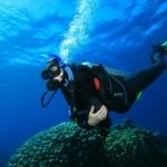 diver_websize
