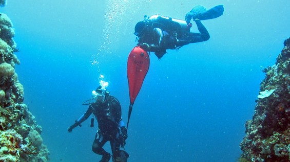 PADI Search and Recovery Diver Course